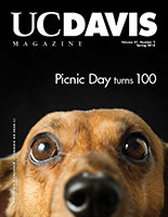 Cover photo: close-up of dachsund peering over bottom edge of cover